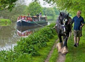 Kennet Horse Boat Co in Berkshire